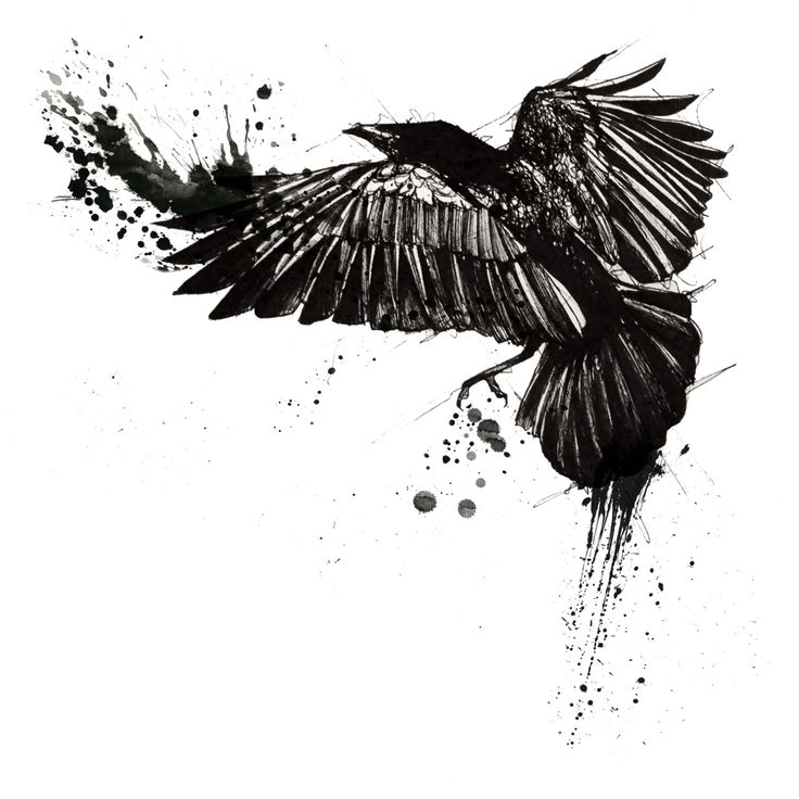 Raven flock tattoos