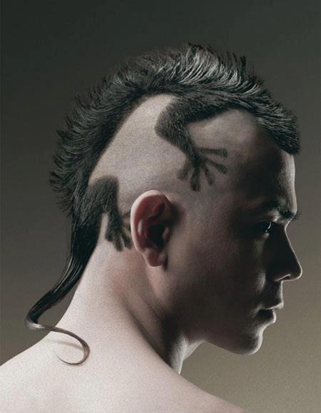 Funny-Lizard-Haircuts-For-Men.jpg