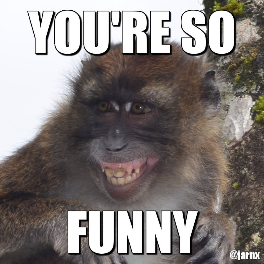 Funny baby monkey pictures with quotes
