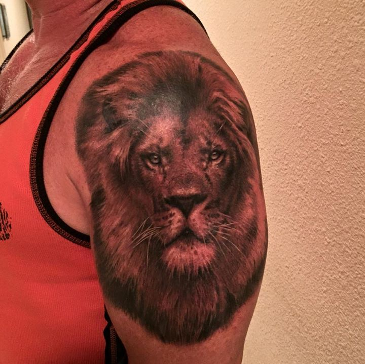 Two Realistic Lion Tattoos On Half Sleeve by Francisco Sanchez