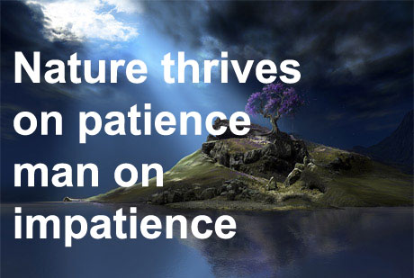 Nature thrives on patience; man on impatience.