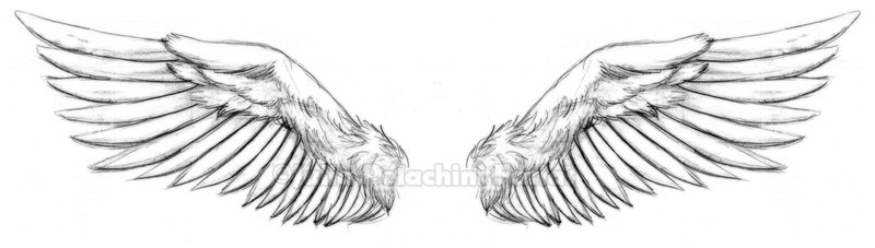 Wings tattoo design by kiken girl urmus Gallery