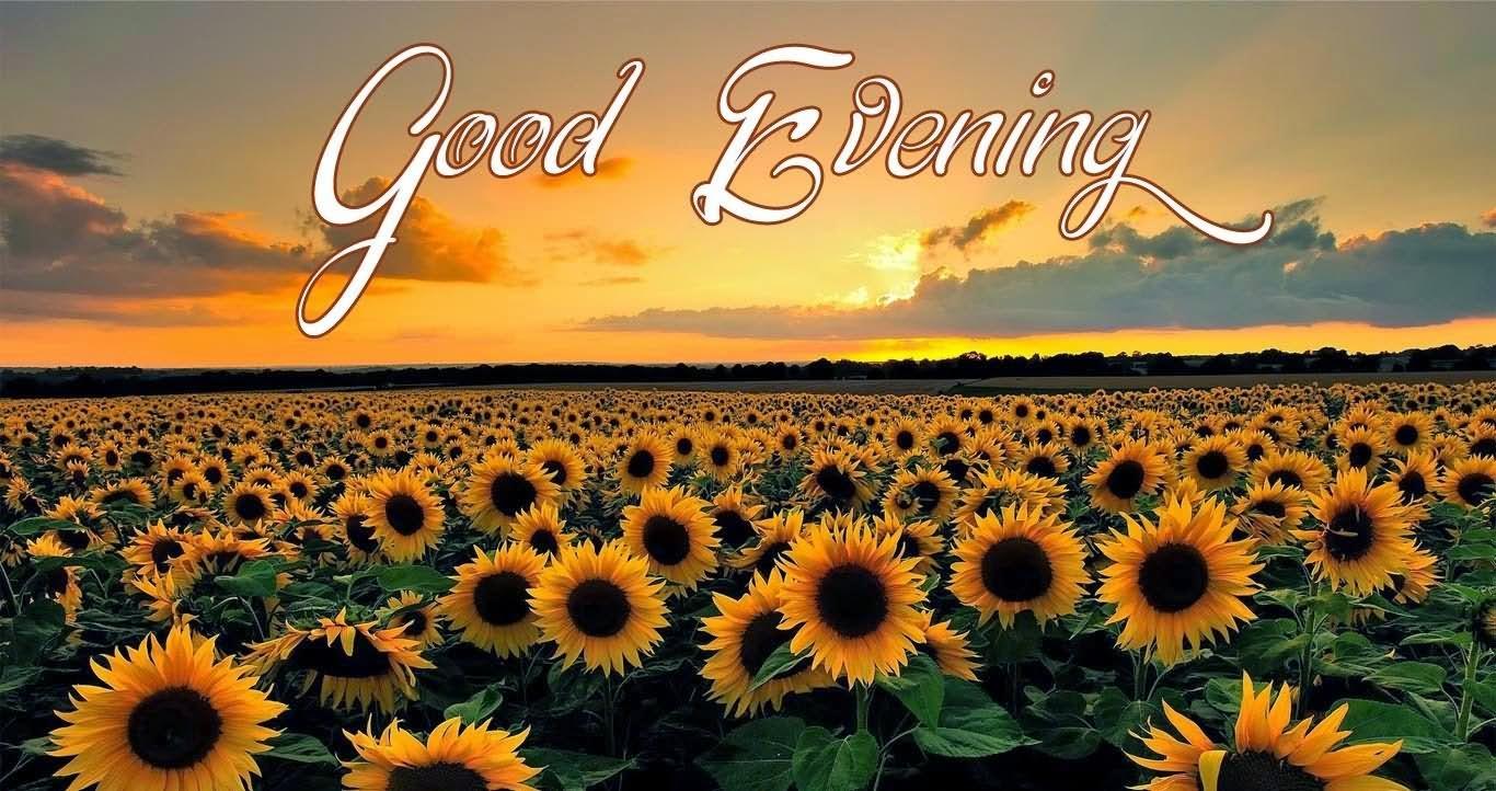 Открытки днем, добрый вечер картинки красивые на английском языке