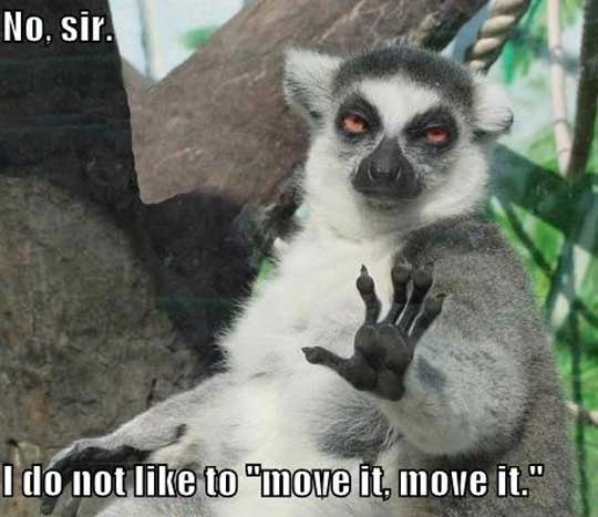 I-Do-Not-Like-To-Move-It-Move-It-Funny-A