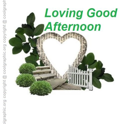 60 Beautiful Good Afternoon Love Images Custom Gud Afternoon Image Download