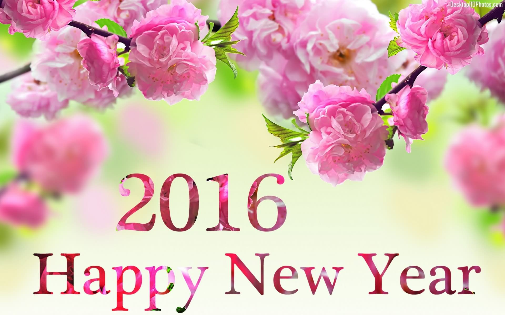 2016 happy new year flowers picture