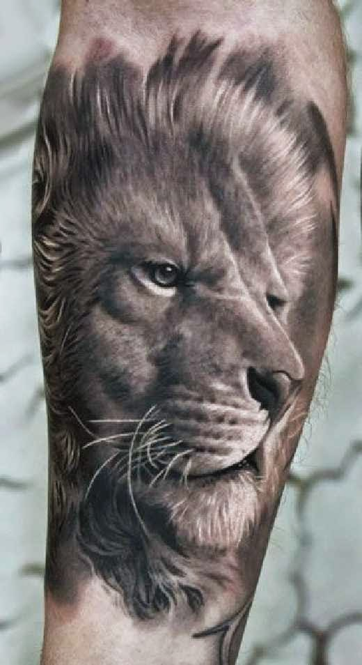 3d grey lion tattoo on forearm for Lion head tattoo