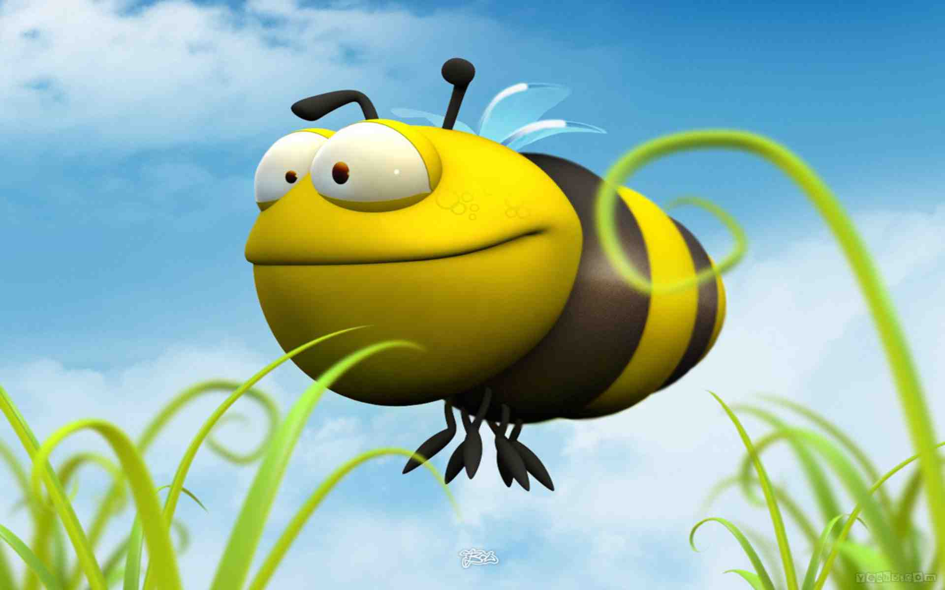 This is a picture of Striking Funny Bee Picture