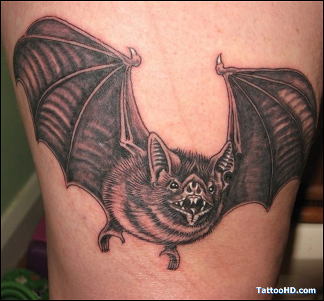 15 Cool Bat Tattoo Images And Design Ideas