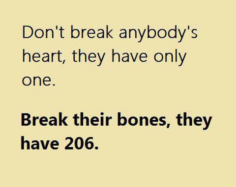Funny Quotes Love Unique Break Their Bones They 206 Funny Love Quote