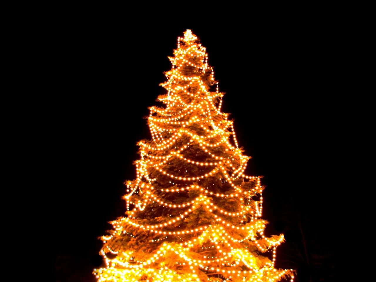 Outdoor Christmas Light Balls