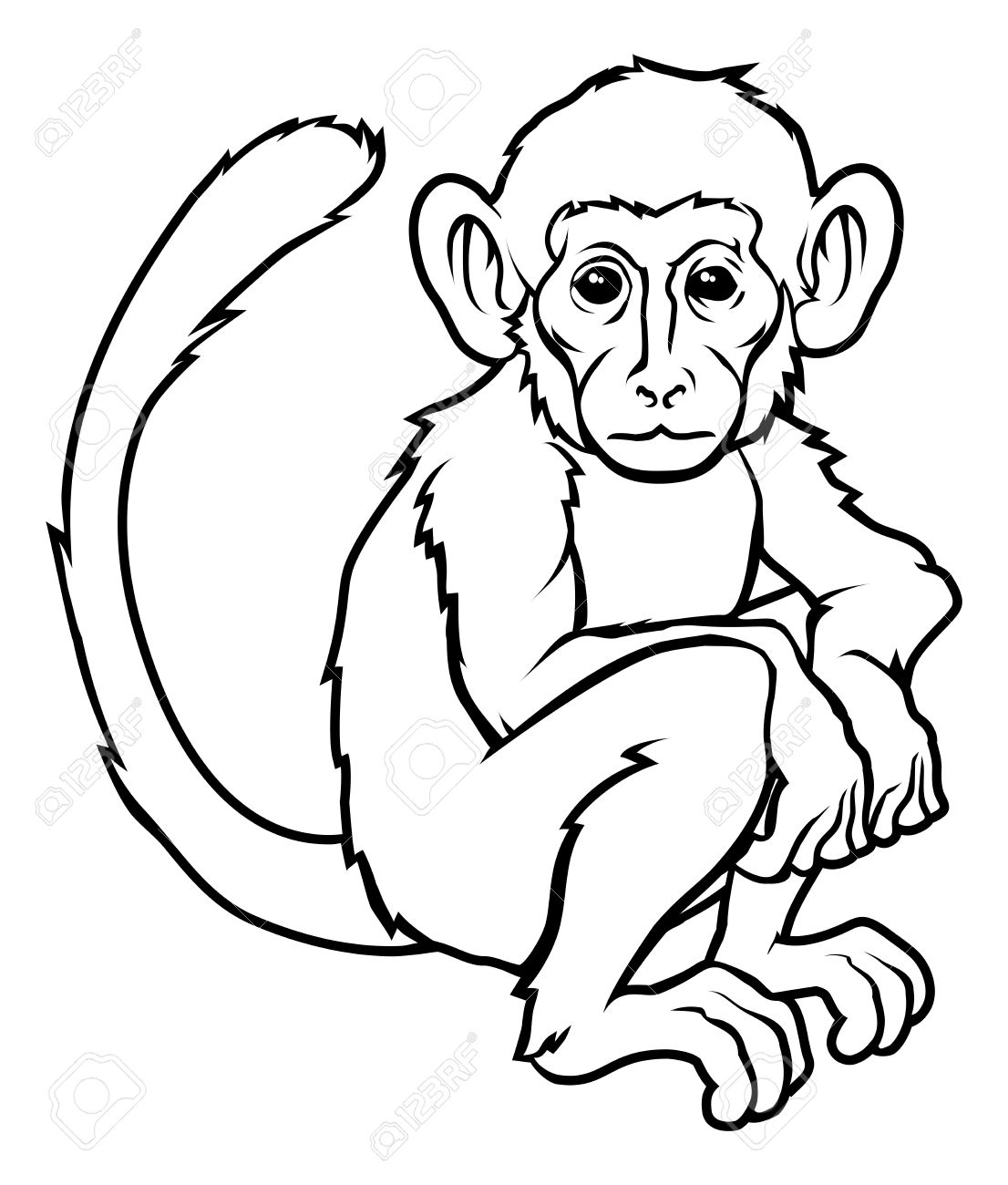 Line Drawing Monkey : Monkey line drawing gallery