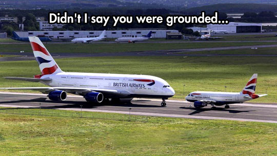 Didnt I Say Were Grounded Funny Plane didn't i say were grounded funny plane,Funny Plane Pictures Images