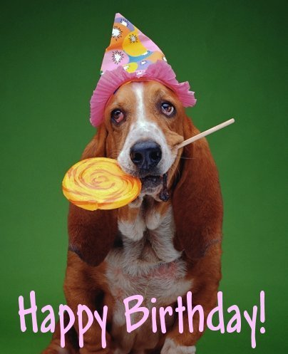 funny birthday card ideas