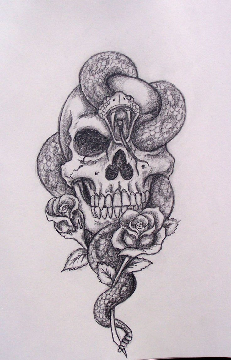 Grey Snake In Skull With Rose Tattoo Design By Rodger Pister