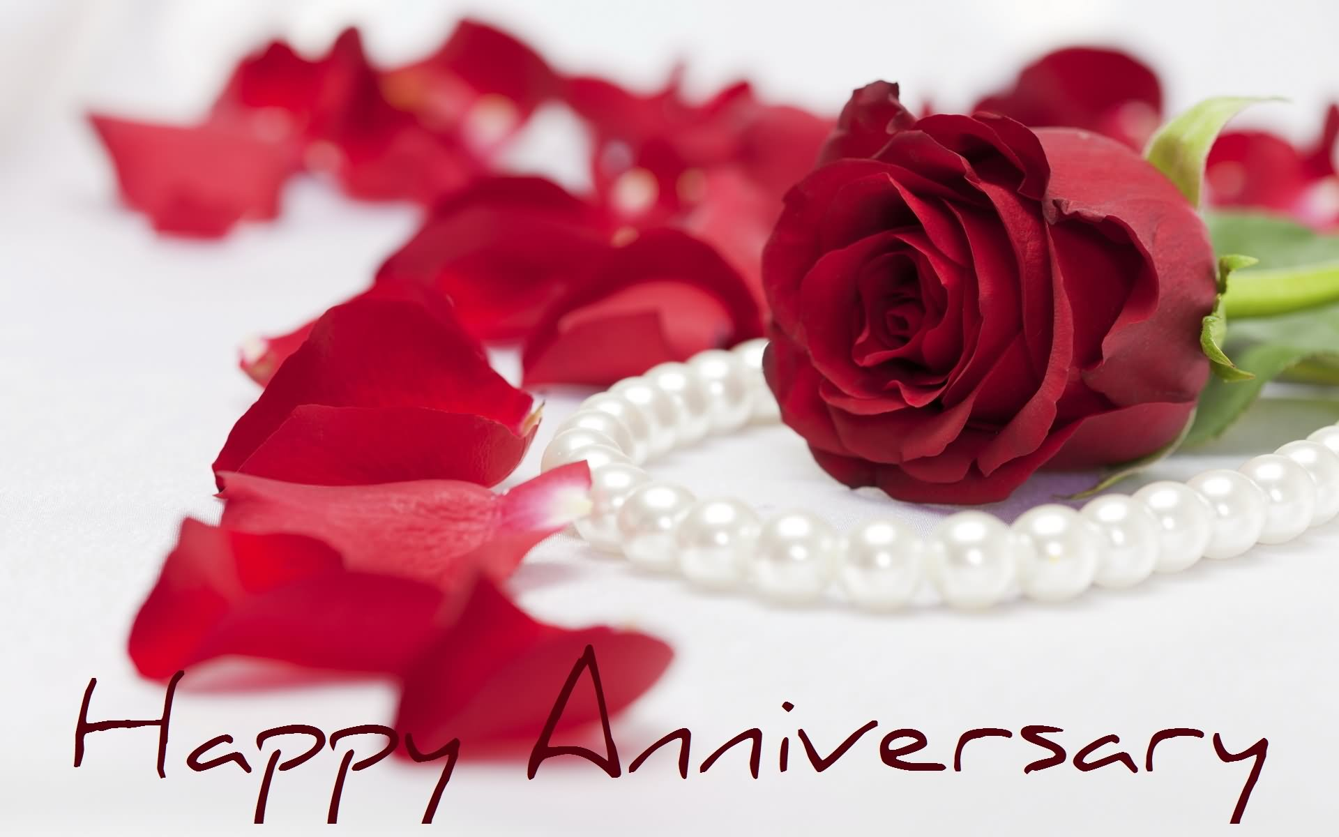 Happy anniversary red rose picture