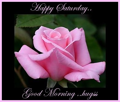 24 Wonderful Saturday Morning Wishes Pictures