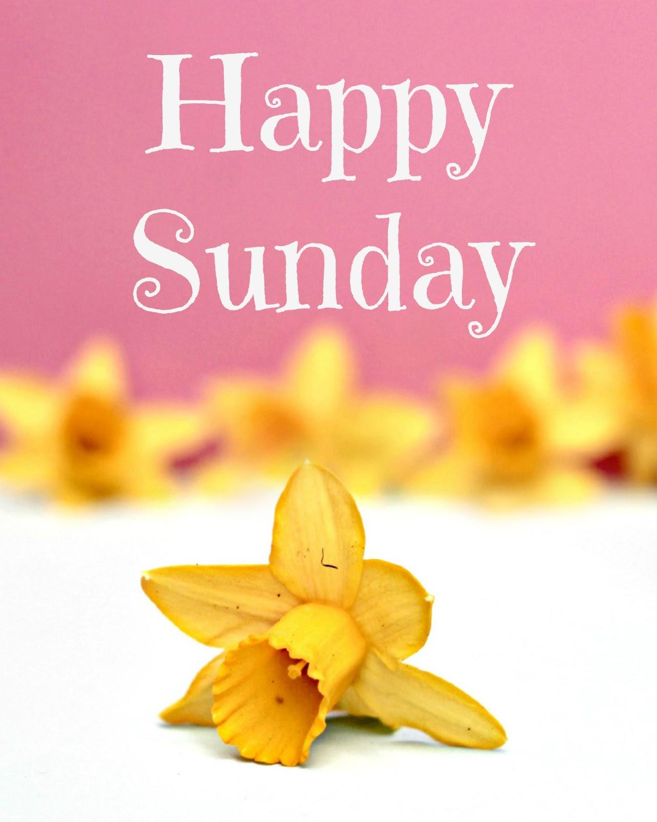 Happy Sunday Greeting Cards