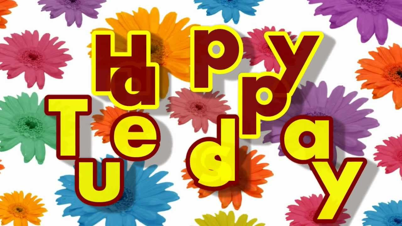 Happy Tuesday Colorful Flowers Greeting Card