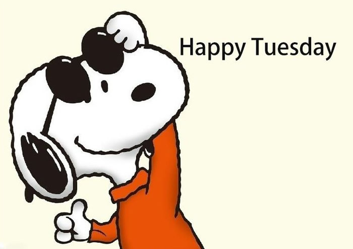 35 Awesome Happy Tuesday Pictures