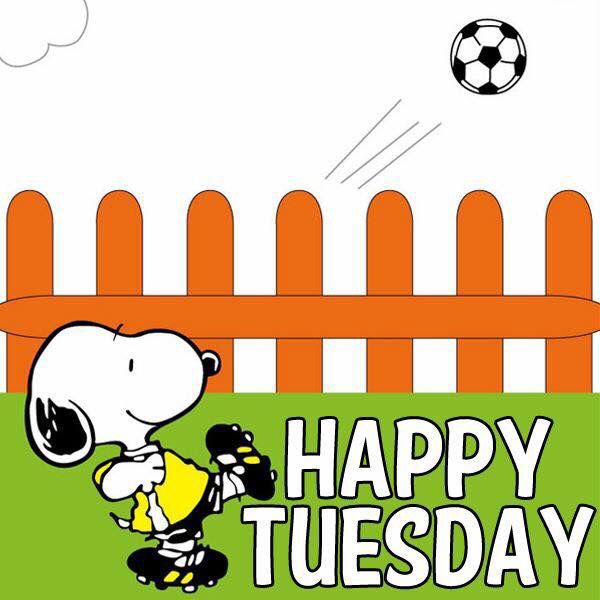 Happy Tuesday Snoopy Dog Playing Football Image