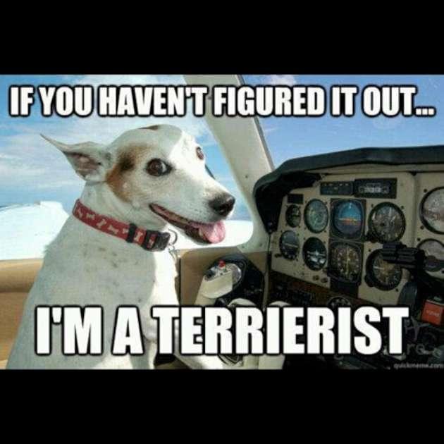 I Am A Terrorist Funny Plane Meme