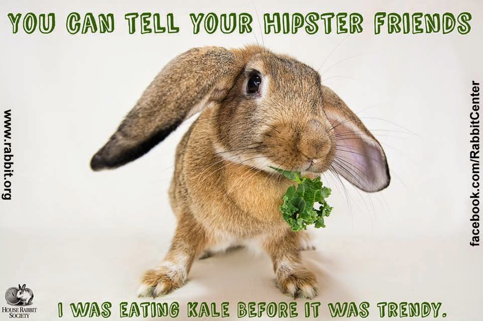 Funny Meme About Kale : Most funny exercise images