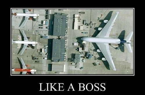 Like A Boss Funny Plane Poster