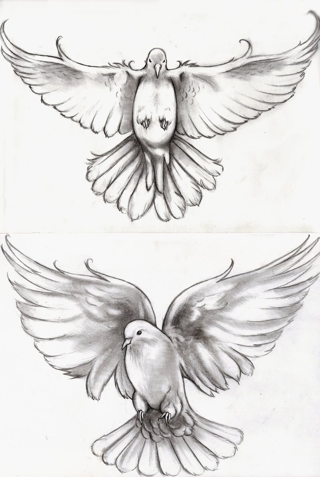 two flying dove tattoo design by abou. Black Bedroom Furniture Sets. Home Design Ideas