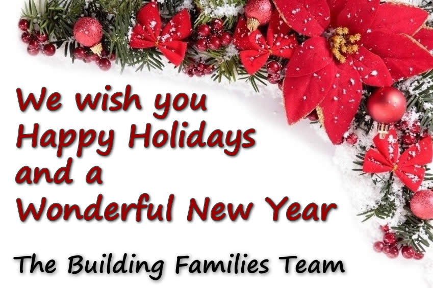 wishing you happy holidays and a joyful new year