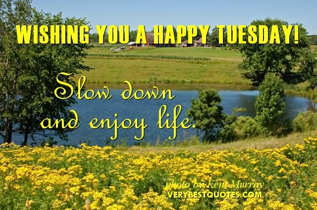 Wishing You A Happy Tuesday Slow Down And Enjoy Life