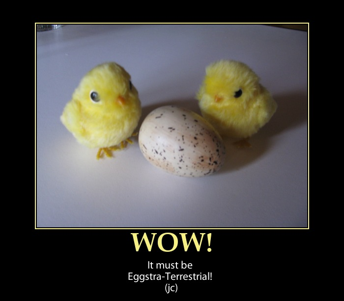 Wow It Must Be Eggstra Terrstrial Funny Poster