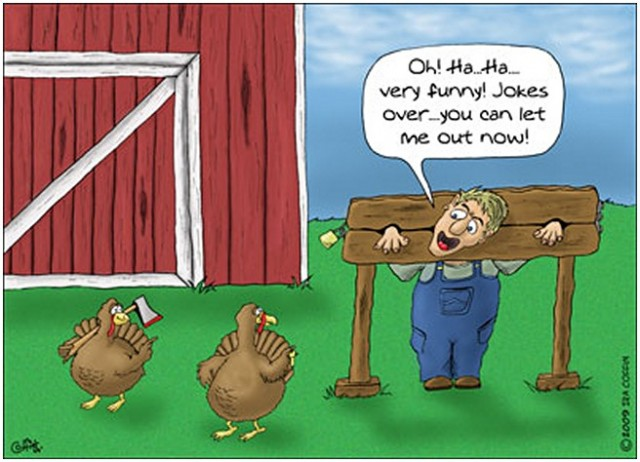 10 Most Funny Thanksgiving Images