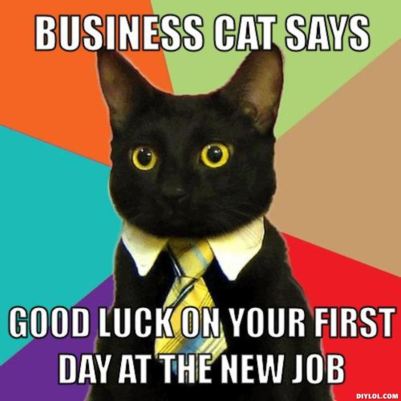 Funny Cat Meme About Work : Very best good luck for you job wishes pictures