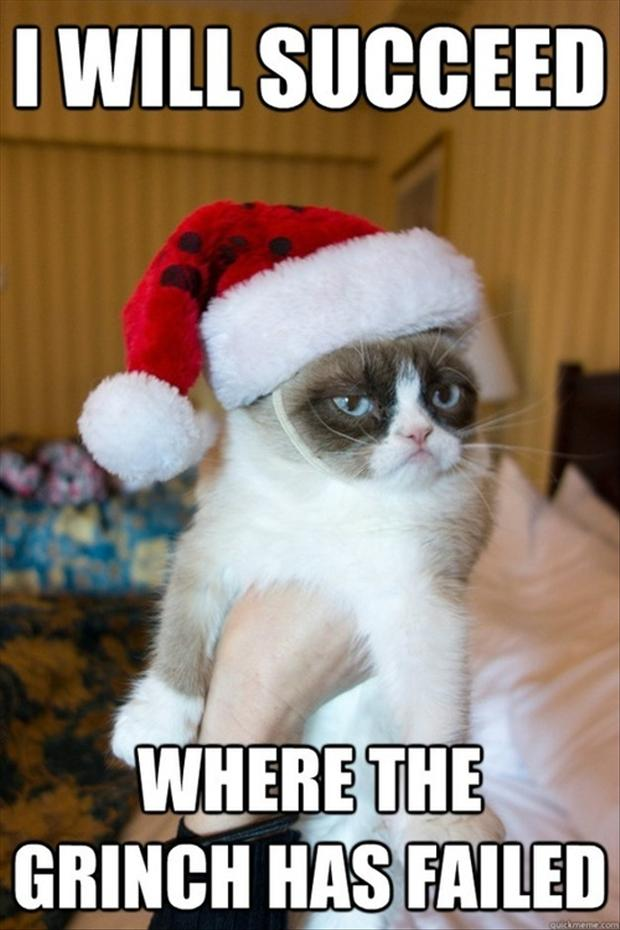 20 Funny Christmas Pictures
