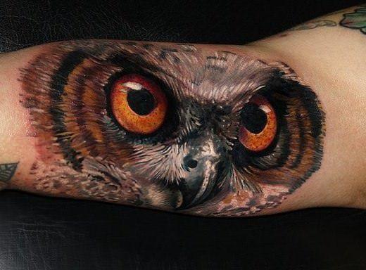 Amazing Realistic Owl Head Tattoo On Bicep