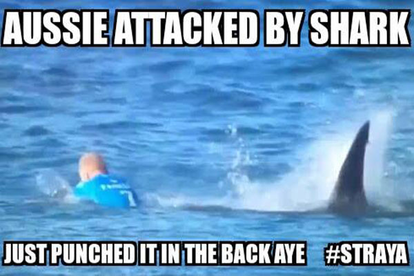 Aussie Attacked By Shark Funny Meme