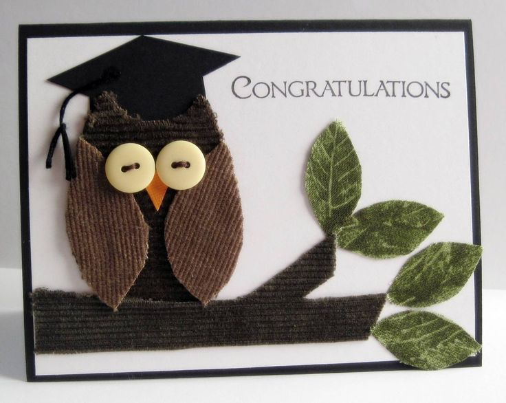 congratulations on your graduation owl picture greeting card