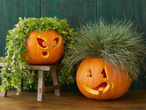 Funny Pumpkin Smiling Face Picture