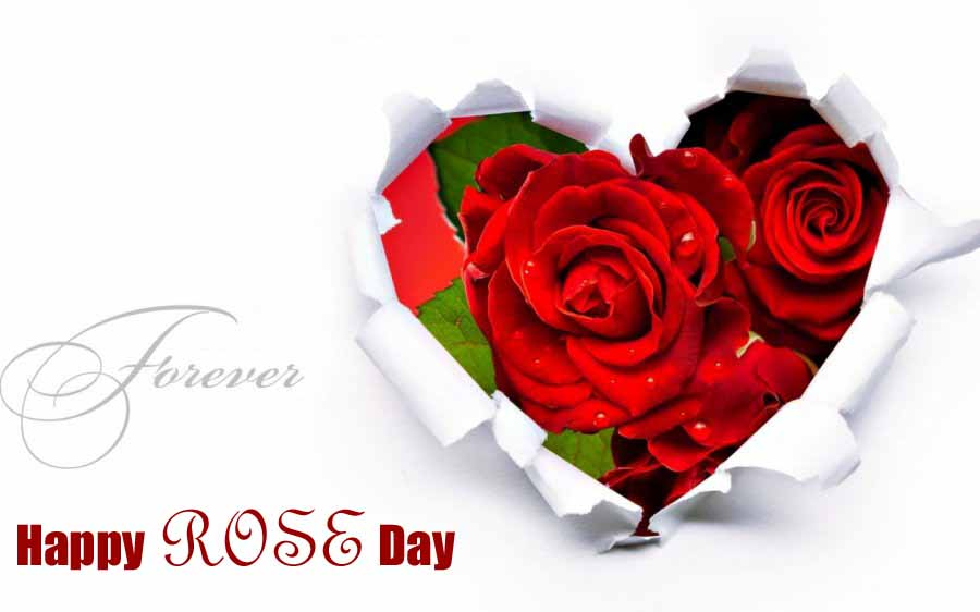 50 Most Beautiful Happy Rose Day Wish Pictures