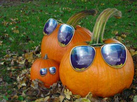 20 Most Funny Pumpkin Pictures