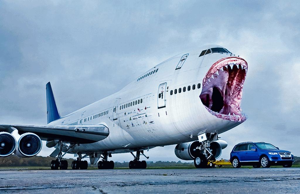 Shark attacks plane - photo#2