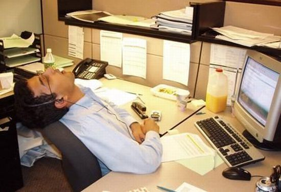 Funny Sleeping Picture At Work