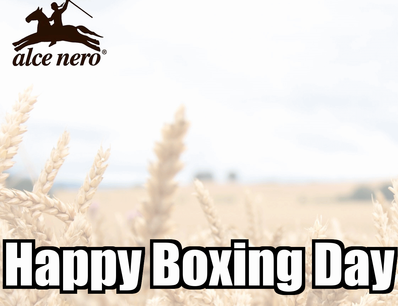 Happy Boxing Day Greetings