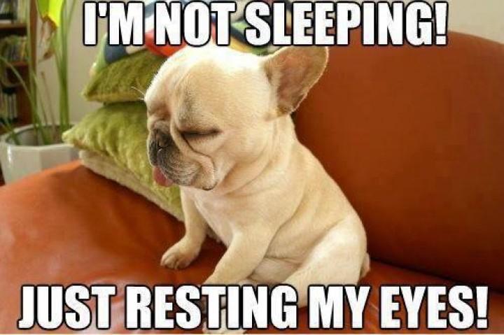 I Am Not Sleeping Just Resting My Eyes Funny Sleeping Meme