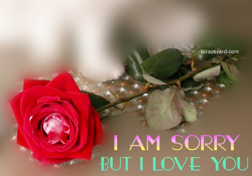 I Am Sorry But I Love You Rose Bud Picture
