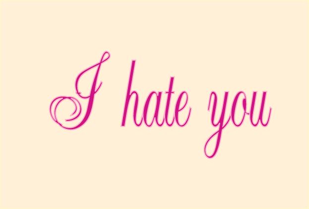 I Hate You Image