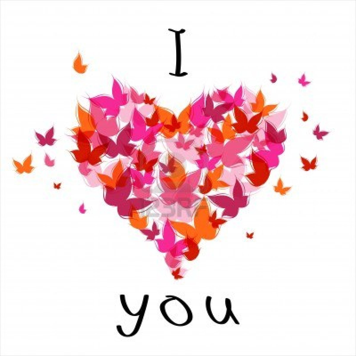 I Love You: I Love You Butterflies Heart Picture