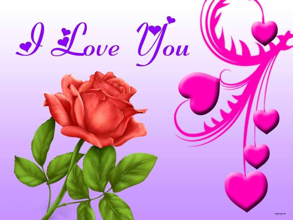 I Love You Rose Bud Wallpaper