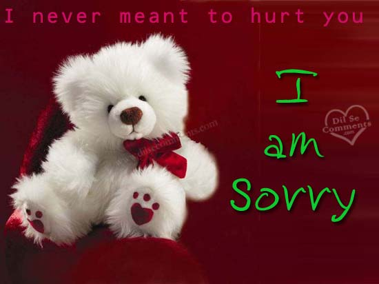 I Never Meant To hurt You I Am Sorry